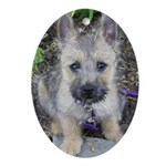 """Cairn Terrier """"Emma"""" Oval Ornament"""