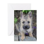 """Cairn Terrier """"Emma"""" Greeting Card"""