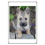 """Cairn Terrier """"Emma"""" Banner"""