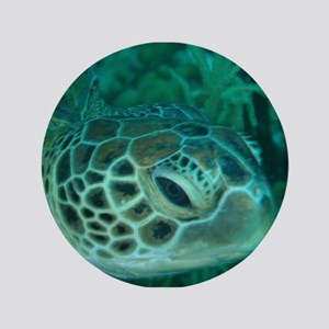 "Green Turtle 3.5"" Button"
