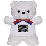 Black Chrome Teddy Bear