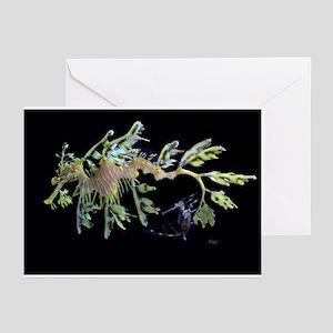 Sea Dragons by Karen Greeting Cards (Pk of 20)