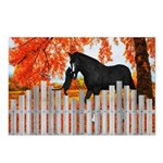 Black Horse And Cat Postcards (package Of 8)