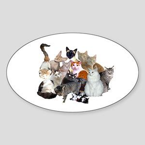 Kitty Pile Oval Sticker