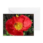 PopBee Blank Greeting Card
