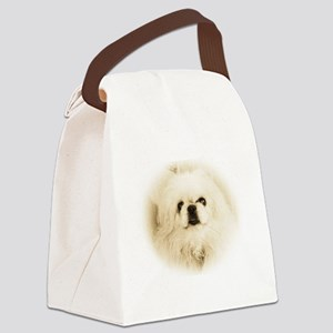 Tristan face Canvas Lunch Bag