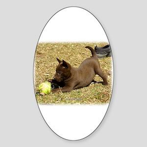 Australian Kelpie 9P022D-010 Sticker (Oval)