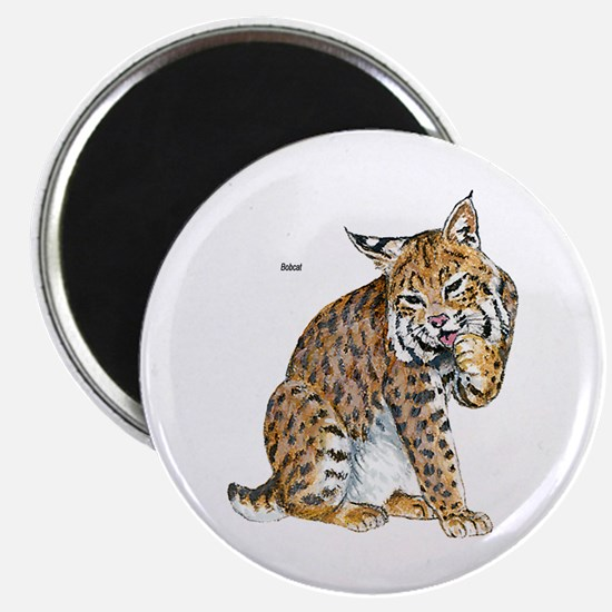 Bobcat Wild Cat Magnet