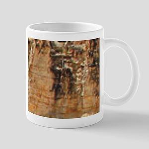 sulfur rocks of yellowstone Mugs