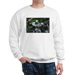 Mia and the Ogre Sweatshirt