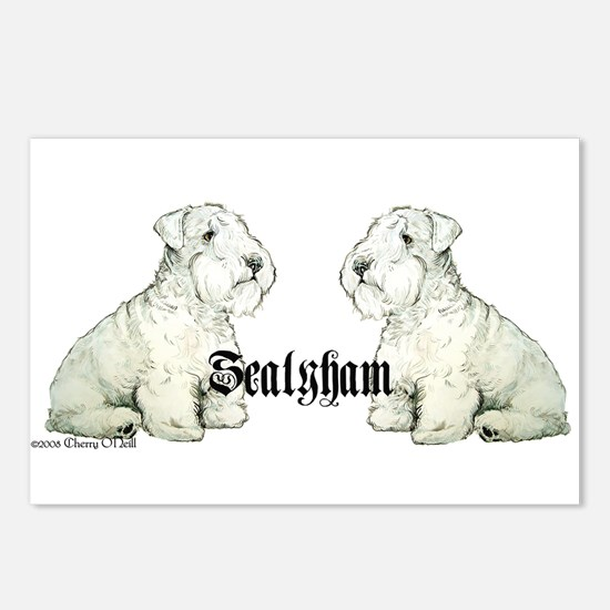 Sealyham Terrier Dog Portrait Postcards (Package o