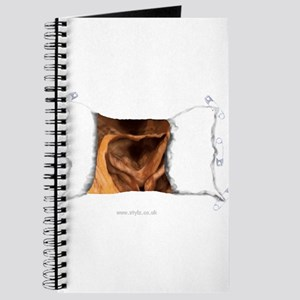 Other Gifts - sgusting Orific Journal