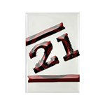 21st Birthday Gifts Rectangle Magnet (10 pack)