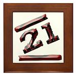 21st Birthday Gifts Framed Tile