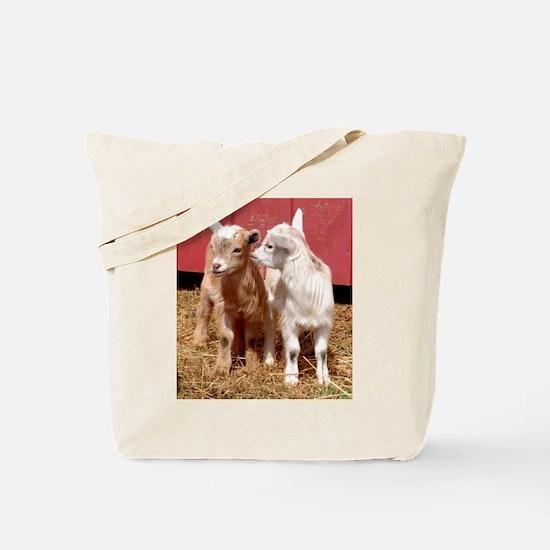 PYGMY GOATS Tote Bag