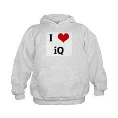 I Love iQ Hoodie