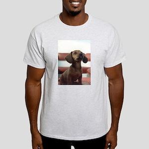 Wiener Dog Daschound Ash Grey T-Shirt