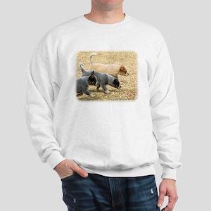 Australian Cattle Dog 8T57D-18 Sweatshirt