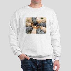Australian Cattle Dog 8T60D-08 Sweatshirt