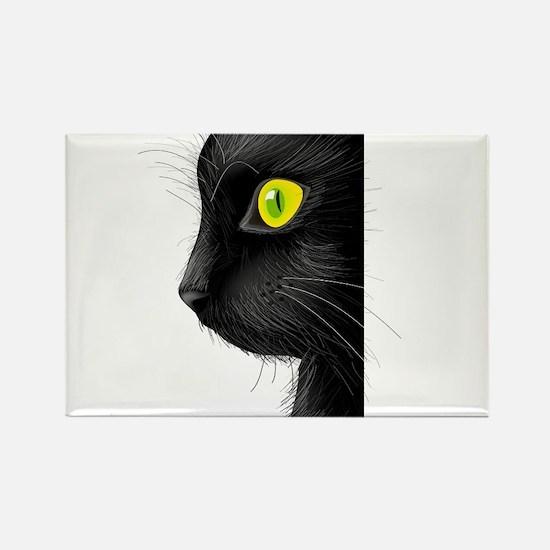 i love cat Magnets