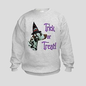 Dalmatian Trick Kids Sweatshirt