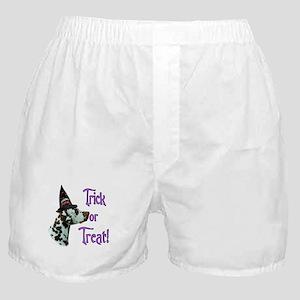 Dalmatian Trick Boxer Shorts