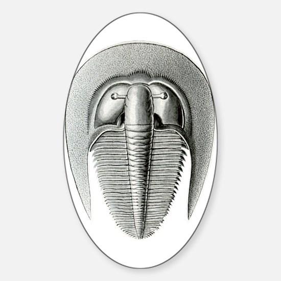 Trilobite Sticker (Oval)