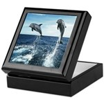 Dolphin Diving Keepsake Box