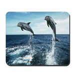 Dolphin Diving Mousepad
