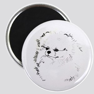 Pom Head 3 blk.&wh. Magnet