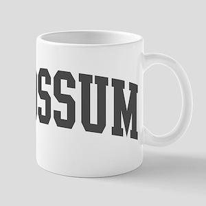 Possum (curve-grey) Mug