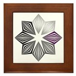 Demisexual Pride Starburst Framed Tile