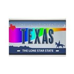 Texas Rainbow State Plate Rectangle Magnet