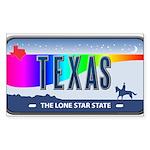 Texas Rainbow State Plate Rectangle Sticker 10 pk