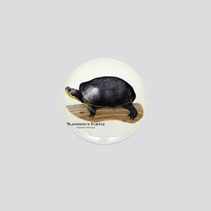 Blanding's Turtle Mini Button