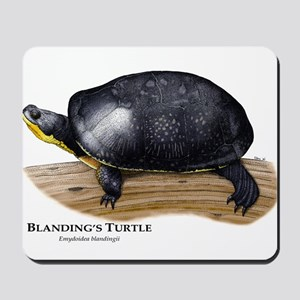 Blanding's Turtle Mousepad