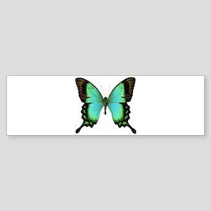 Green Butterfly Bumper Sticker