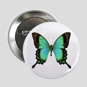 Green Butterfly Button