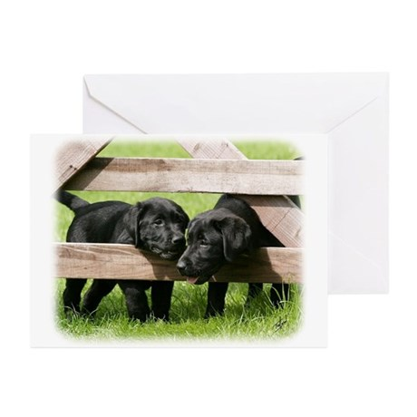 Labrador Pups 9Y415D-168 Greeting Cards (Pk of 10)