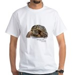 Ornate Box Turtle White T-Shirt