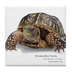 Ornate Box Turtle Tile Coaster