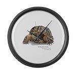 Ornate Box Turtle Large Wall Clock