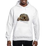 Ornate Box Turtle Hooded Sweatshirt