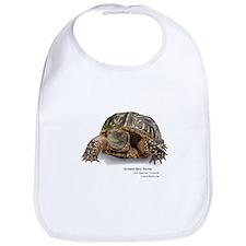 Ornate Box Turtle Bib