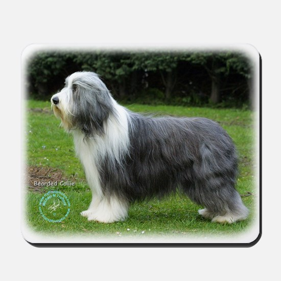 Bearded Collie 8R002D-16 Mousepad