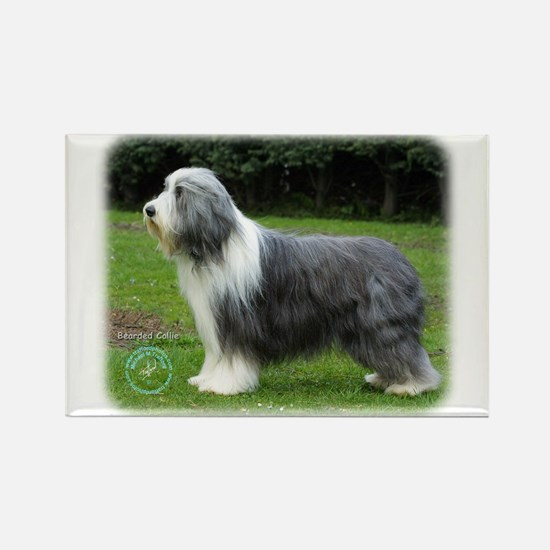 Bearded Collie 8R002D-16 Rectangle Magnet