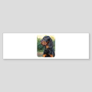 Gordon Setter 9Y109D-021 Sticker (Bumper)