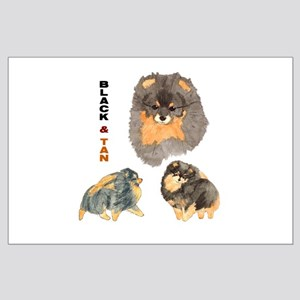 Blk.& Tan Pomeranian Collage Large Poster