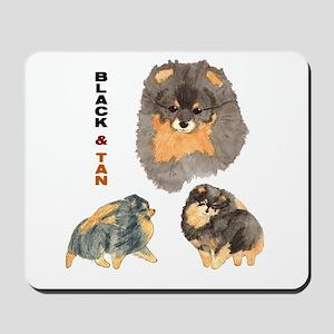 Blk.& Tan Pomeranian Collage Mousepad