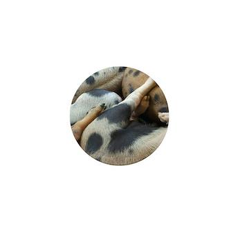 Lotsa Spots Mini Button (100 pack)